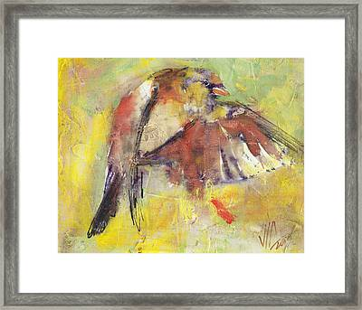 Landing On The Rainbow Framed Print