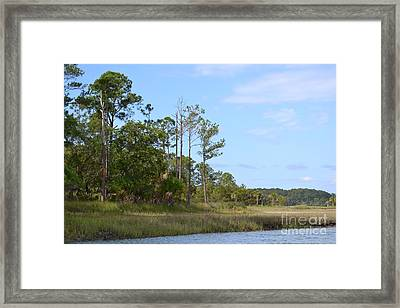 Framed Print featuring the photograph Landscape And Blue Sky by Carol  Bradley