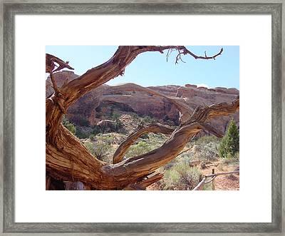 Landscape Arch Framed Print by Dave Clark