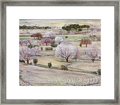 Landscape In Coral And Jade Framed Print by Richard Bulman