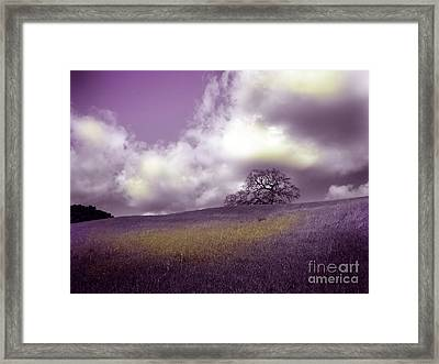 Landscape In Purple And Gold Framed Print by Laura Iverson