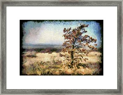 Landscape Of A Lonely Tree, Matra, Hungary. Framed Print