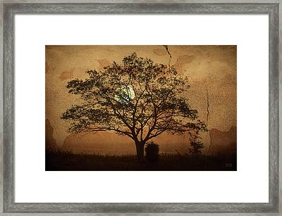 Landscape On Adobe Wall Framed Print