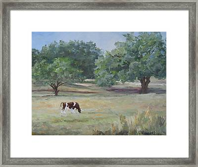 Landscape With Longhorn Framed Print by Connie Schaertl