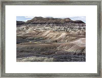 Landscape With Many Colors Framed Print by Melany Sarafis