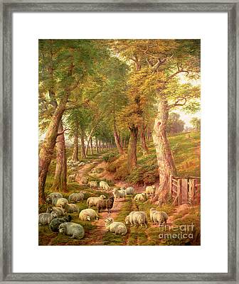Landscape With Sheep Framed Print by Charles Joseph