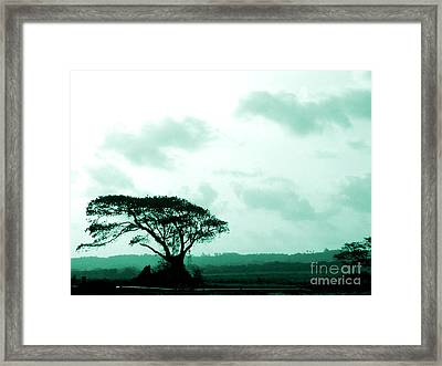 Landscape With Tree Framed Print by Barbara Marcus