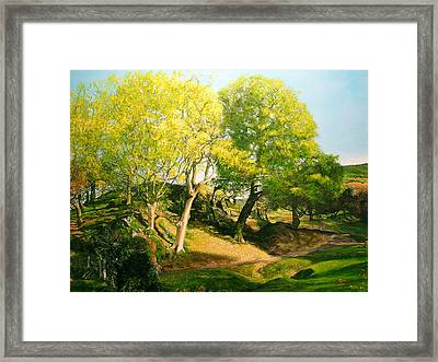 Landscape With Trees In Wales Framed Print by Harry Robertson