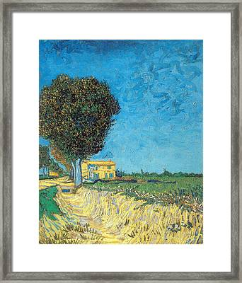 Framed Print featuring the painting Lane Near Arles by Van Gogh