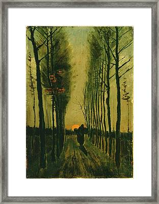 Framed Print featuring the painting Lane Of Poplars At Sunset by Van Gogh