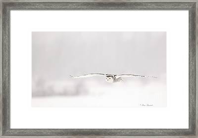 L'ange Des Cieux Framed Print