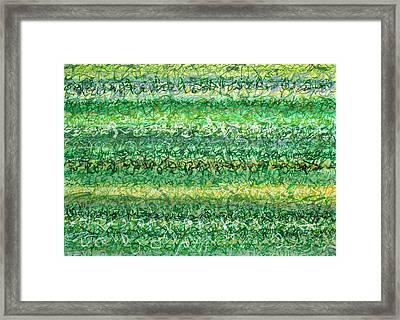 Language Of Grass Framed Print by Jason Messinger