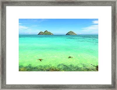 Lanikai Beach Two Sea Turtles And Two Mokes Framed Print by Aloha Art