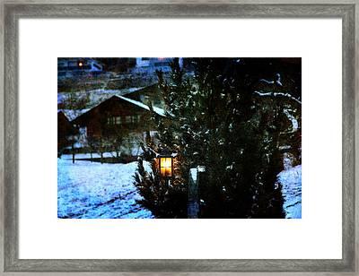 Lantern In The Woods Framed Print