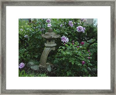 Lantern With Dahlia Framed Print