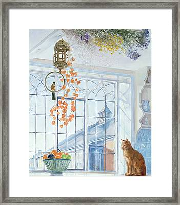 Lanterns Framed Print by Timothy Easton