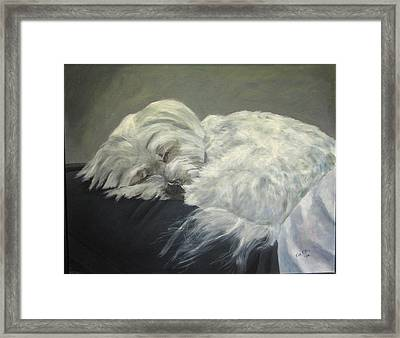 Lap Dog Framed Print by Elizabeth Ellis