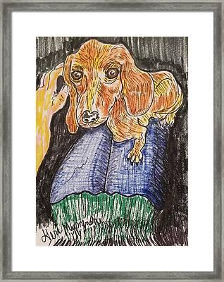 Lap Dog Framed Print