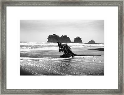 Lapush Washington Framed Print by Todd Fox