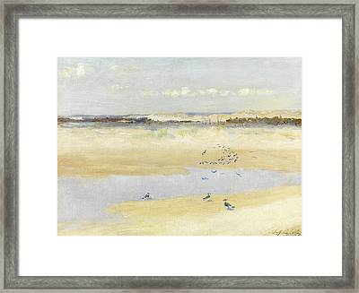 Lapwings By The Sea Framed Print