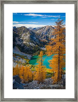 Larches At Colchuck Framed Print