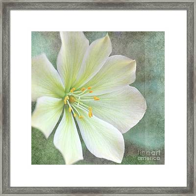 Large Flower Framed Print