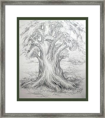 Large Shady Tree Framed Print by Ruth Renshaw