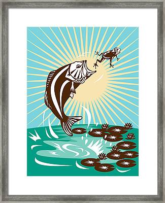 Largemouth Bass Jumping Catching Frog  Framed Print by Aloysius Patrimonio