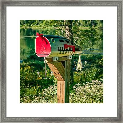 Largemouth Bass Lure Mailbox Framed Print