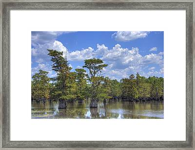 Largemouth Country Framed Print