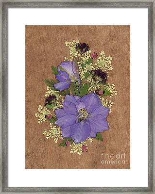Larkspur And Queen-ann's-lace Pressed Flower Arrangement Framed Print