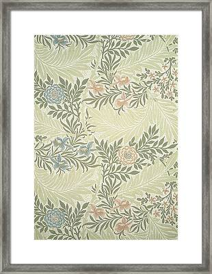 Larkspur  Framed Print