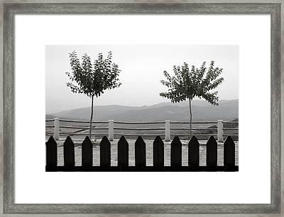 Laroles 38 Framed Print by Jez C Self