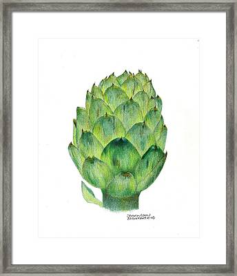l'artichaut The Artichoke Framed Print by Sharon Blanchard