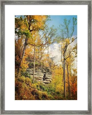 Larue Pine Hills 3 Framed Print by Marty Koch