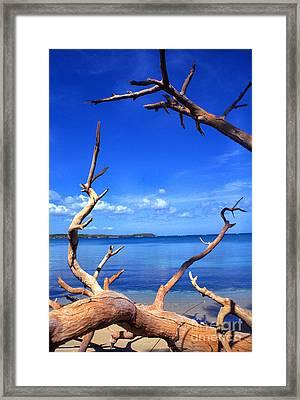Las Cabezas Bay Framed Print by Thomas R Fletcher