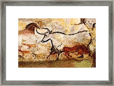 Lascaux Hall Of The Bulls - Aurochs Framed Print