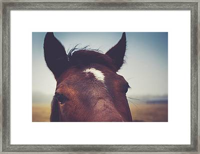 Framed Print featuring the photograph Lashes by Shane Holsclaw