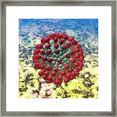 Lassa Virus Framed Print by Russell Kightley