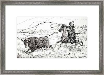 Lassoing A Bull In South America In The 19th Century Framed Print by American School