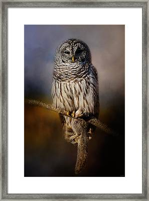 Last Catch Of The Day Framed Print by Jai Johnson