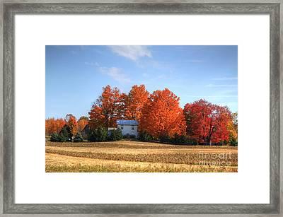 Last Color On The Farm Framed Print by Robert Pearson