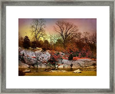 Last Fall Framed Print by Diana Angstadt