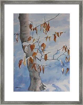 Last Leaves Framed Print by Debbie Homewood