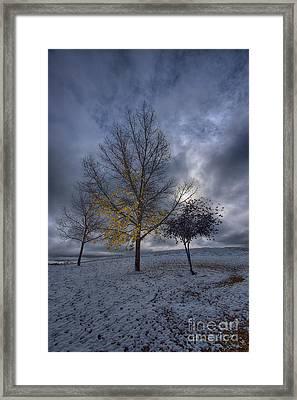 Last Leaves Framed Print