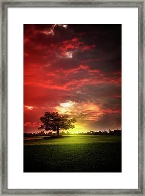 Last Light At Nightfall Framed Print by Debra and Dave Vanderlaan