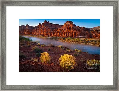 Last Light At San Juan River Framed Print by Inge Johnsson