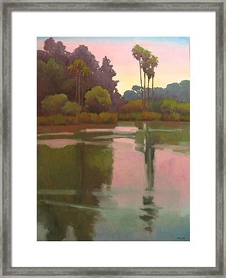 Last Light At The Bird Sanctuary Framed Print by Jennifer Boswell