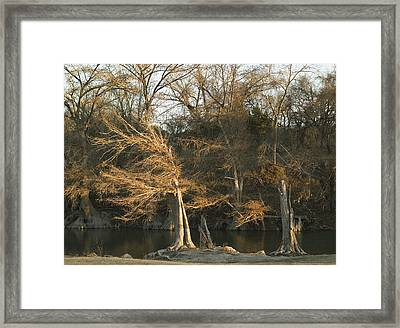 Last Light Framed Print by Clyde Replogle