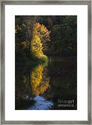 Framed Print featuring the photograph Last Light - D009910 by Daniel Dempster
